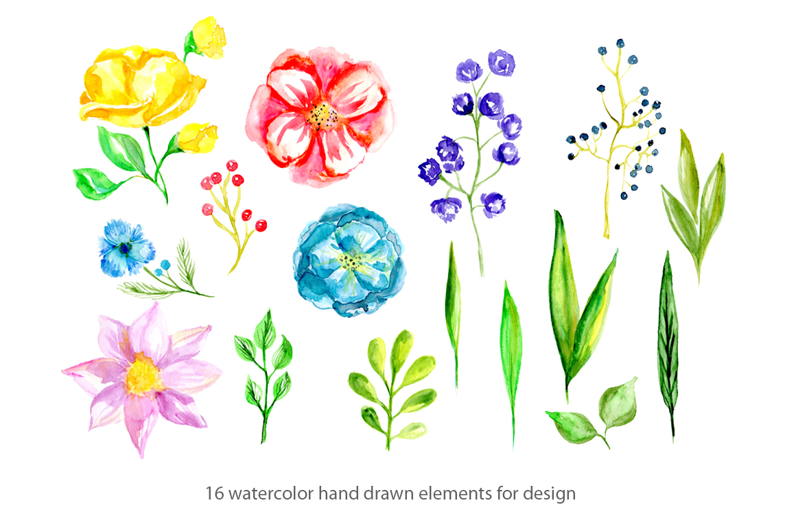 Watercolor Spring Bright Flowers In Illustrations On Yellow Images